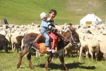 tash-rabat - ikiziak trek 208