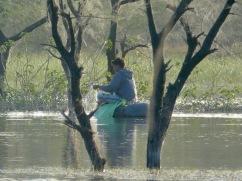 Dungarpur Fisherman 2